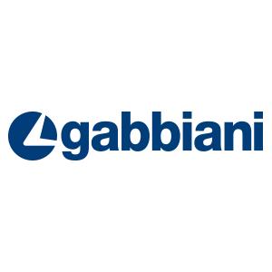 Gabbiani logo